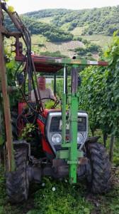Propst Dietmar Blank beim maschinellen Laubschnitt, auch dabei macht er wie gewohnt eine gute Figur! Termingerechte Laubarbeiten sind wichtige Voraussetzungen für gesundes Lesegut und wunderbare Weine!